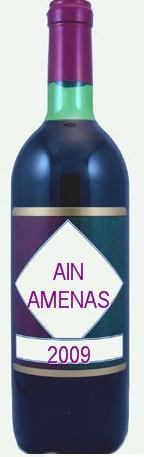 ain-amenas
